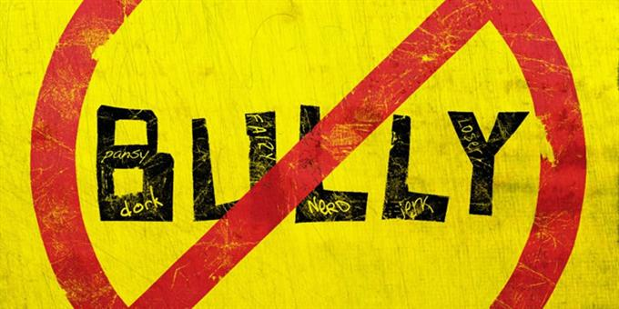 Bully Project